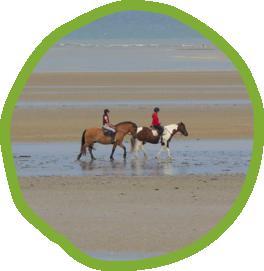 loisirs, équitation, normandie