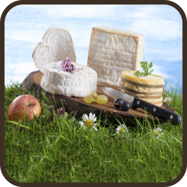 gastronomie, fromages normands, restaurants, normandie