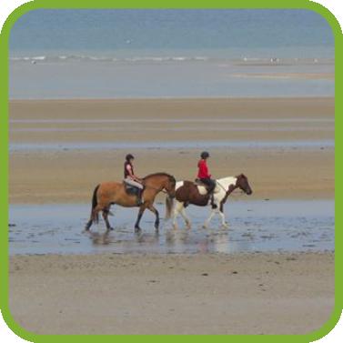 loisirs, équitation, plage, normandie