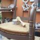 atelier gris mousse Cabourg