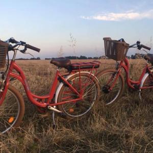 coffee bike normandie